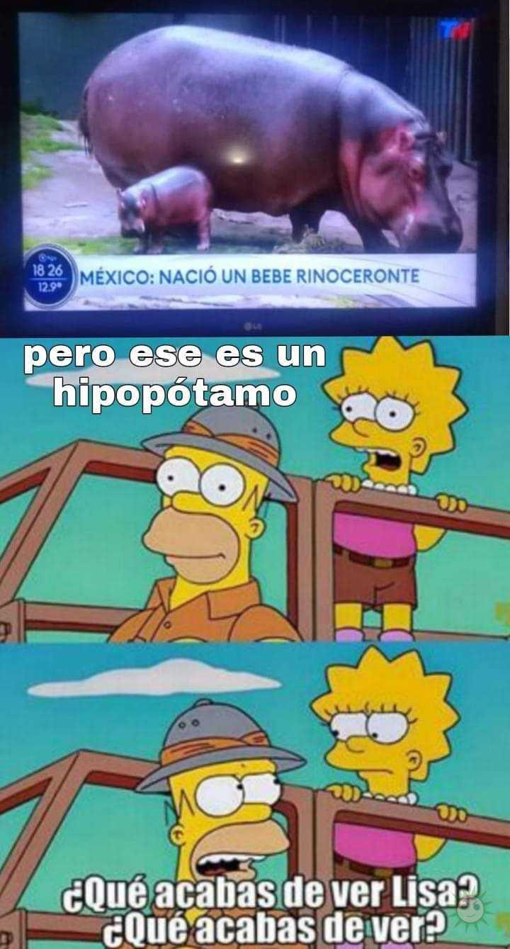 ¿Qué acabas de ver Lisa?