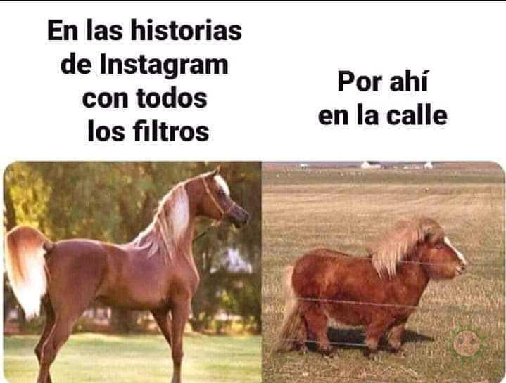 Los filtros de instagram